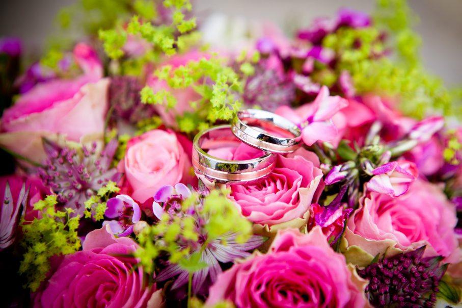 Flowers 260894 907x604