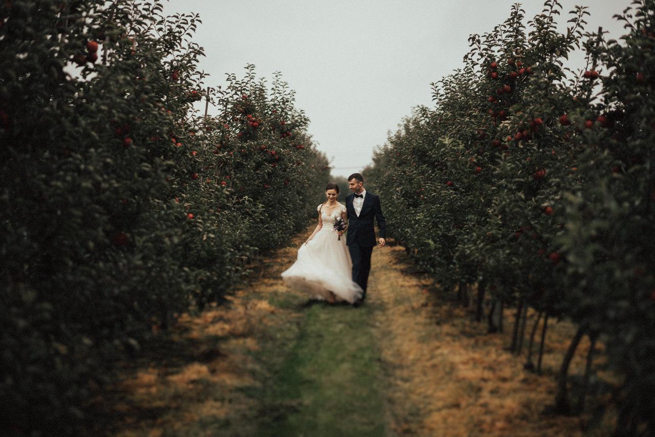 Para Młoda w sadzie, Para Młoda spacerująca po ogrodzie , Para Młoda trzymająca się za ręce